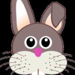 bunny-151552_640