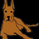 dog-47235_640