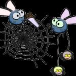 flies-161351_640
